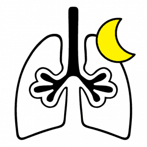 Sleep apnea respiratory assessment