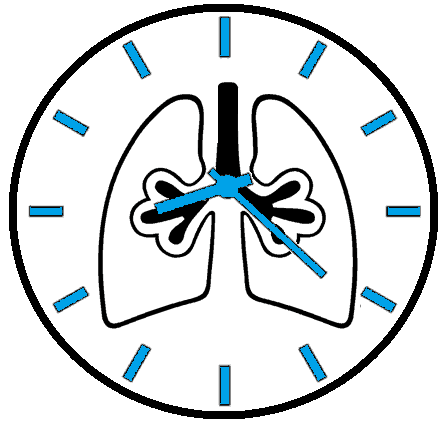 Circadian Rhythm effects lung function