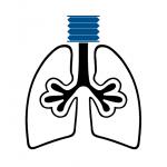 ALI, ARDS, and Ventilator Research