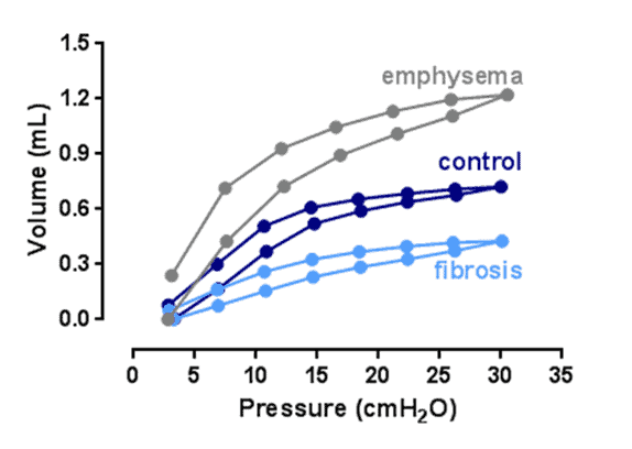 insights from pressure-volume loops
